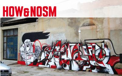 How&Nosm: The Brazil Diaries 9783937946320