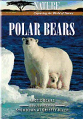 Nature: Polar Bears