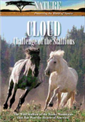 Nature: Cloud Challenge of the Stallions
