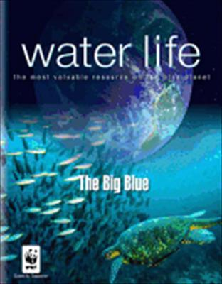 Water Life: Big Blue
