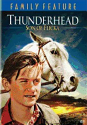 Thunderhead, Son of Flicka