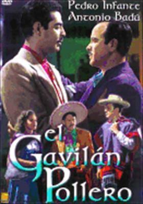 El Gavilan Pillero