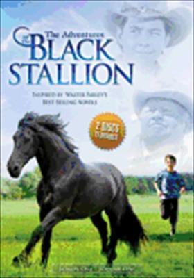 Adventures of the Black Stallion: Season 1, Vol. 1