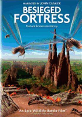 Besieged Fortress
