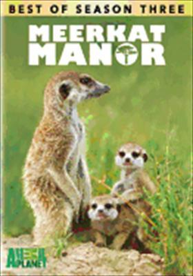 The Best of Meerkat Manor: Best of Season 3