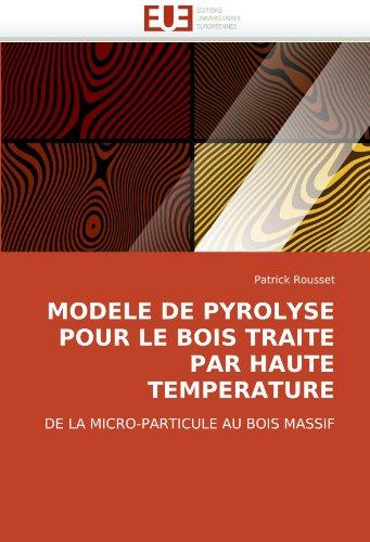 Modele de Pyrolyse Pour Le Bois Traite Par Haute Temperature 9786131513640