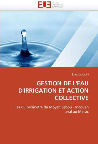 Gestion de L'Eau D'Irrigation Et Action Collective 9786131553493