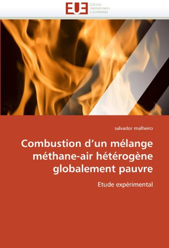 Combustion D'Un Melange Methane-Air Heterogene Globalement Pauvre 9786131558153