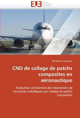 Cnd de Collage de Patchs Composites En a Ronautique 9786131564956