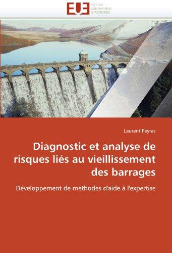 Diagnostic Et Analyse de Risques Li S Au Vieillissement Des Barrages 9786131527906