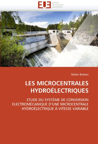 Les Microcentrales Hydroelectriques 9786131530036