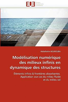 Mod Lisation Num Rique Des Milieux Infinis En Dynamique Des Structures 9786131579967