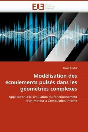 Modlisation Des Coulements Pulss Dans Les Gomtries Complexes 9786131518751