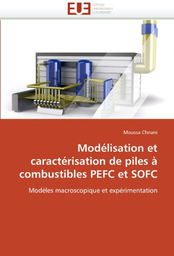 Mod Lisation Et Caract Risation de Piles Combustibles Pefc Et Sofc 9786131584701