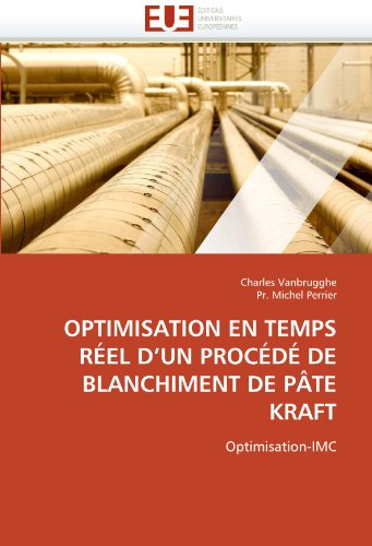 Optimisation En Temps Reel D'Un Procede de Blanchiment de Pate Kraft 9786131543654