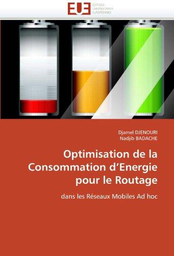 Optimisation de La Consommation D'Energie Pour Le Routage 9786131543876