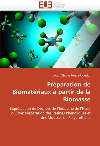 Preparation de Biomateriaux a Partir de La Biomasse 9786131531088