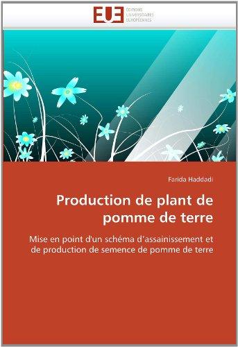 Production de Plant de Pomme de Terre 9786131584244
