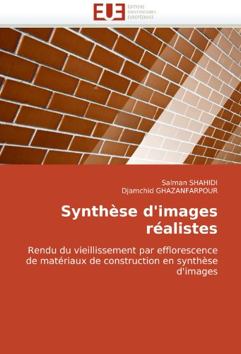 Synthse D'Images Ralistes 9786131503795