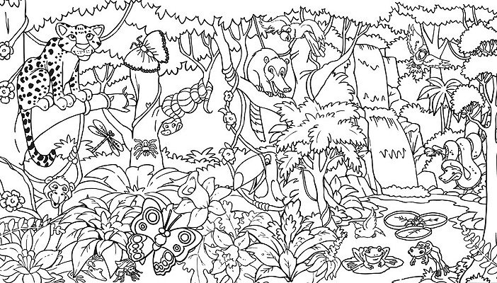 Rainforest plants and flowers coloring pages - photo#14