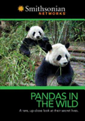 Smithsonian: Pandas in the Wild