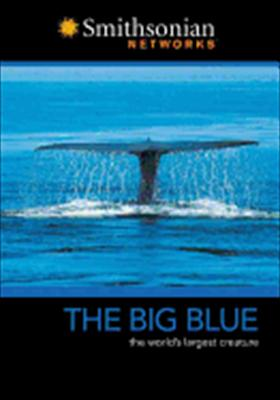 The Big Blue: The World's Largest Creature