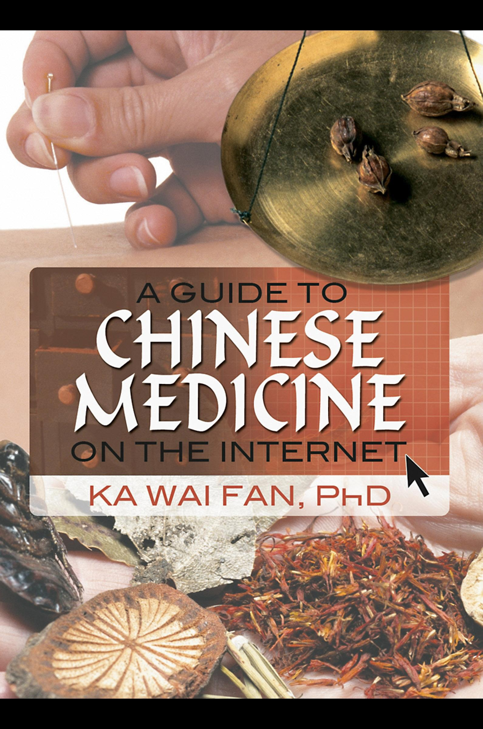 A Guide to Chinese Medicine on the Internet EB9780203889329