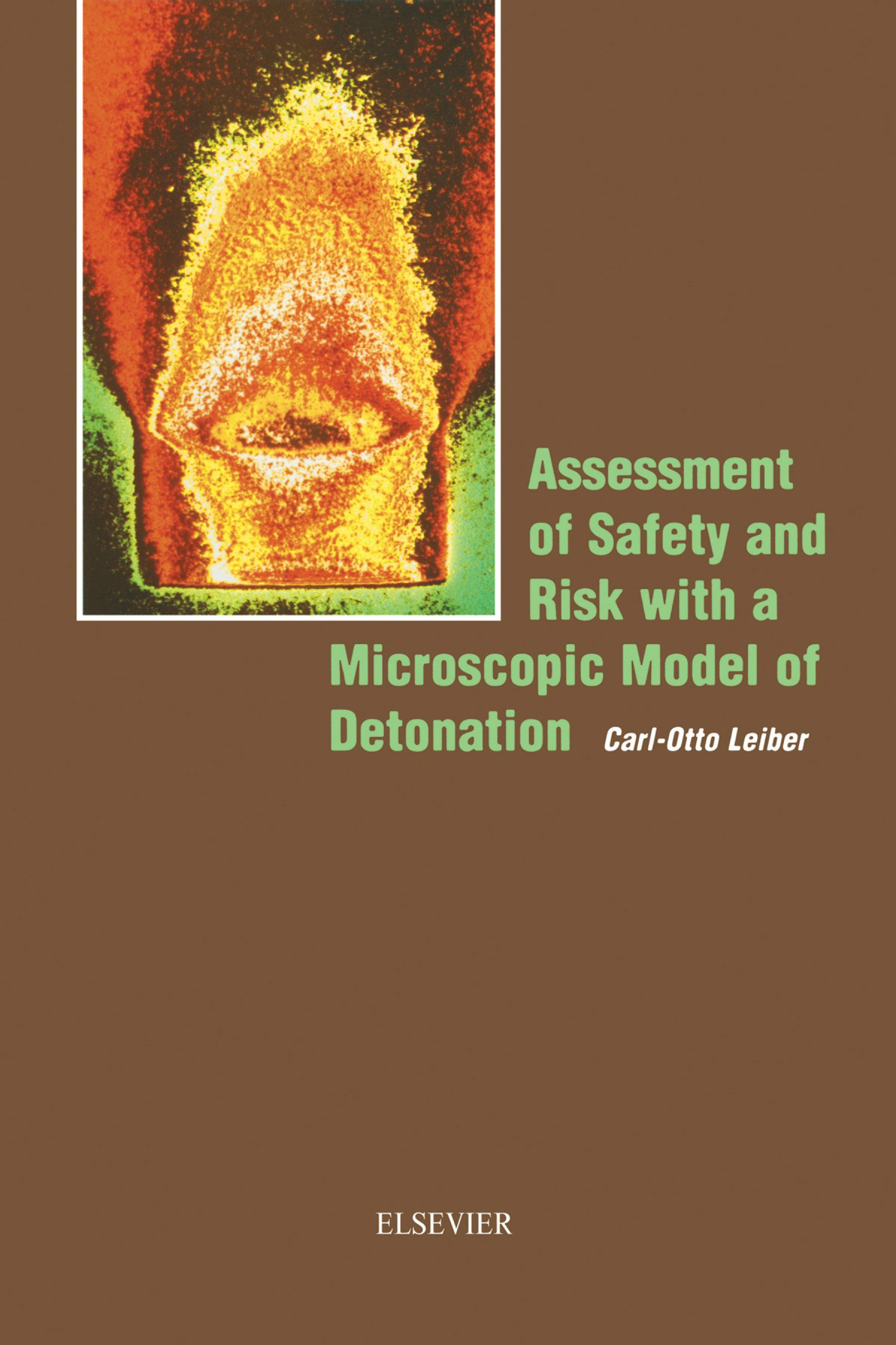 Assessment of Safety and Risk with a Microscopic Model of Detonation EB9780080527628