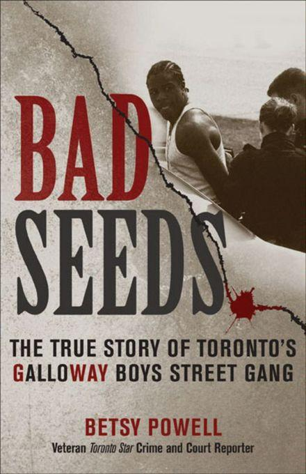 Bad Seeds: The True Story of Toronto's Galloway Boys Street Gang EB9780470157770