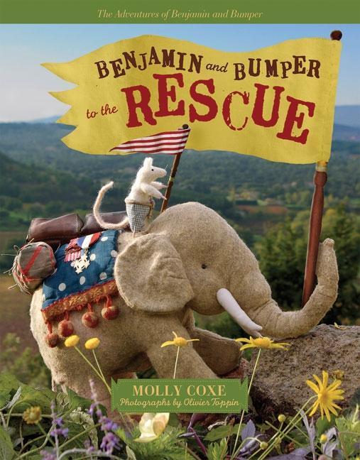 Benjamin and Bumper to the Rescue EB9780981969701