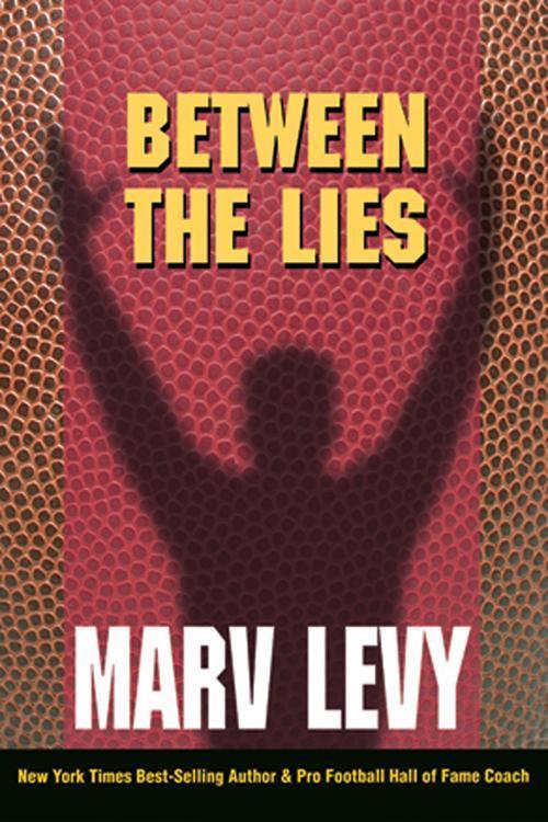 Between The Lies EB9780983061953