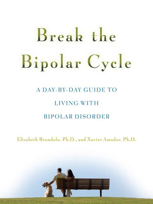 Break the Bipolar Cycle : A Day by Day Guide to Living with Bipolar Disorder