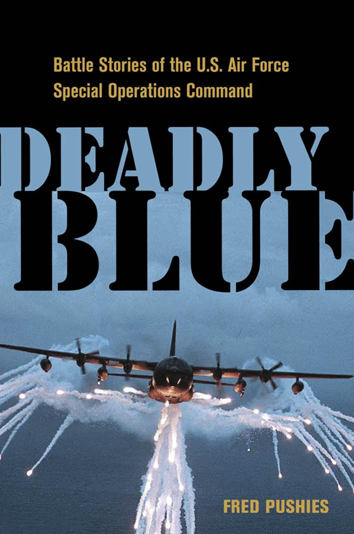 Deadly Blue: Battle Stories of the U.S. Air Force Special Operations Command EB9780814413616