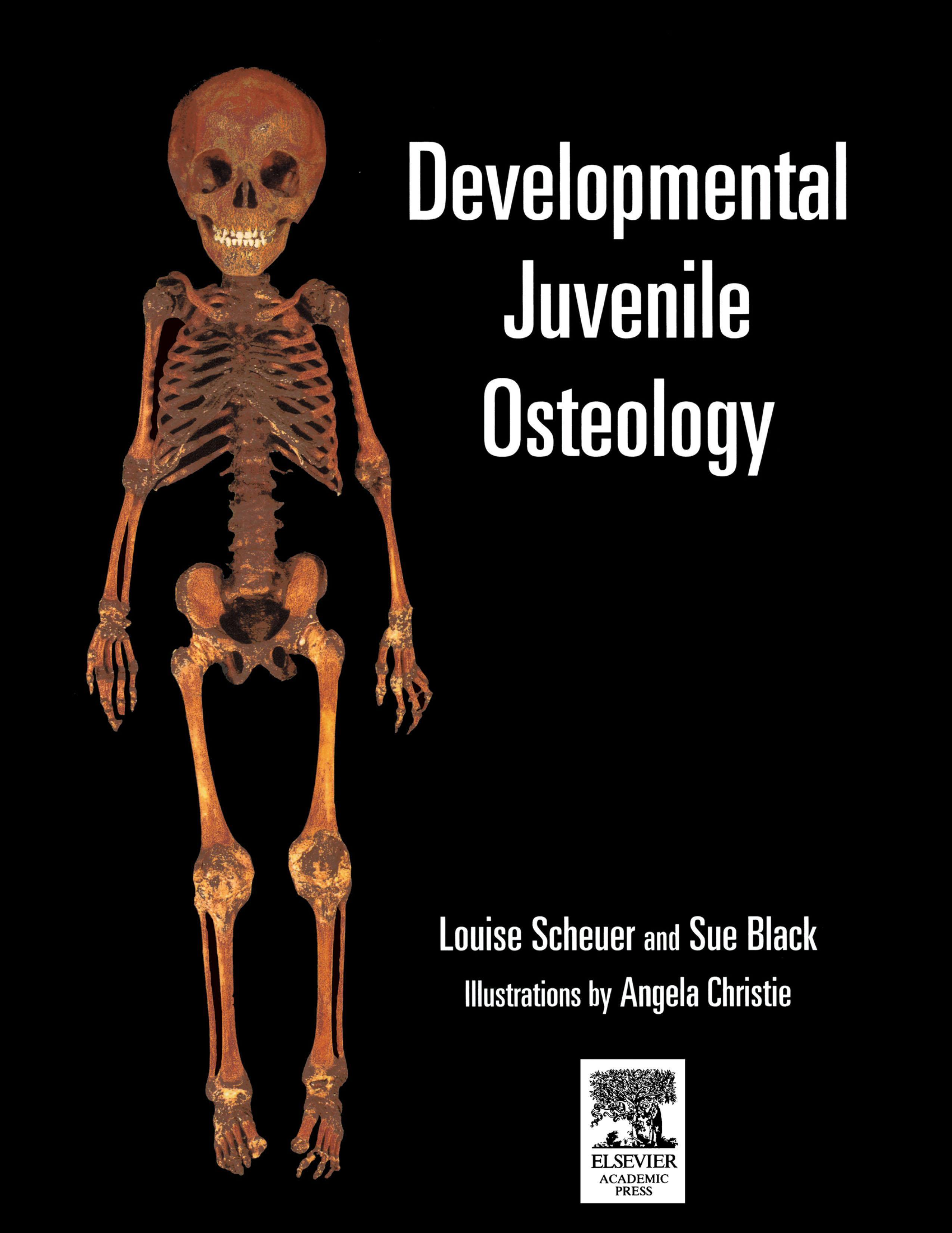 Developmental Juvenile Osteology EB9780080530383