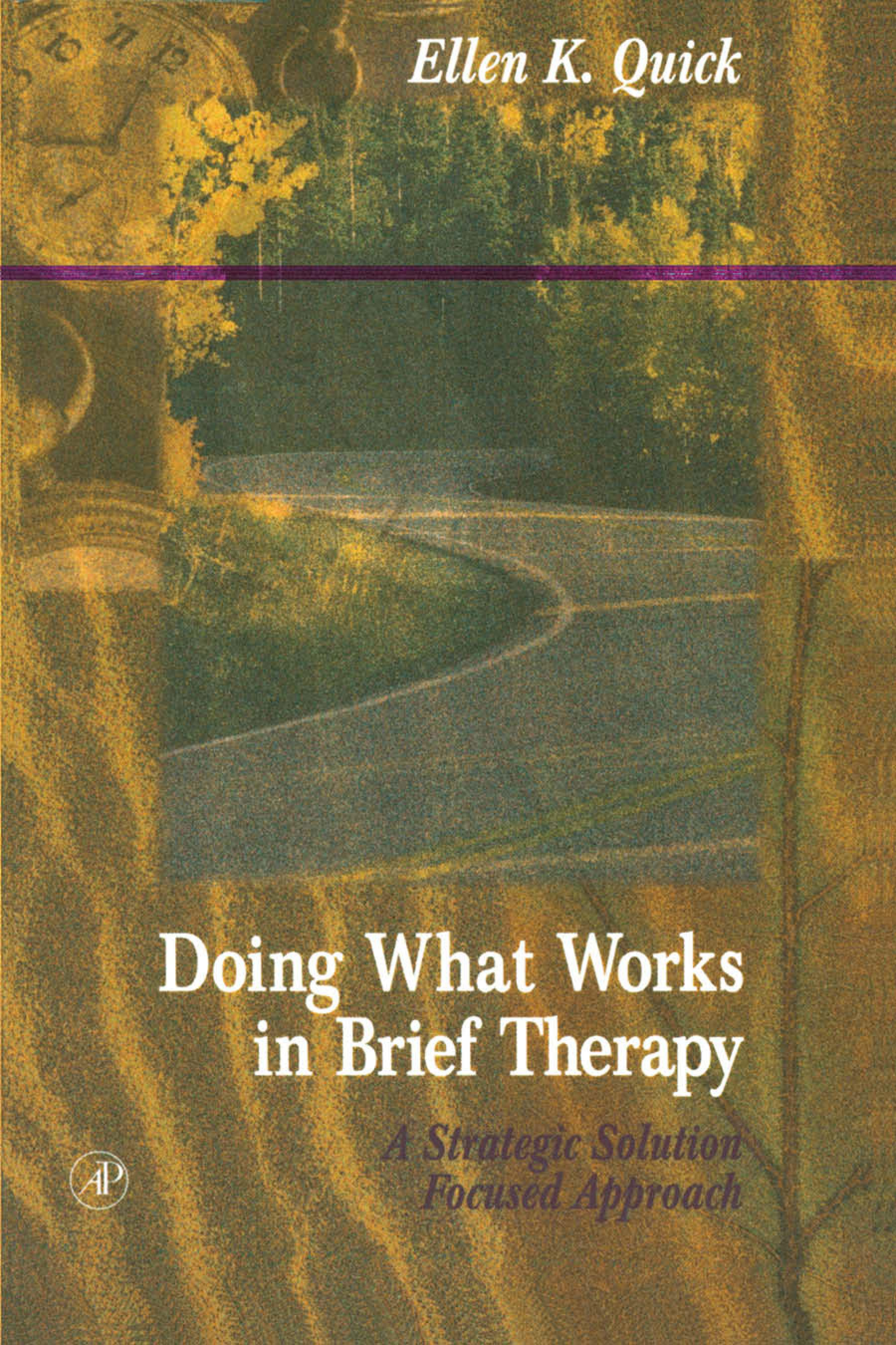 Doing What Works in Brief Therapy: A Strategic Solution Focused Approach EB9780080530499