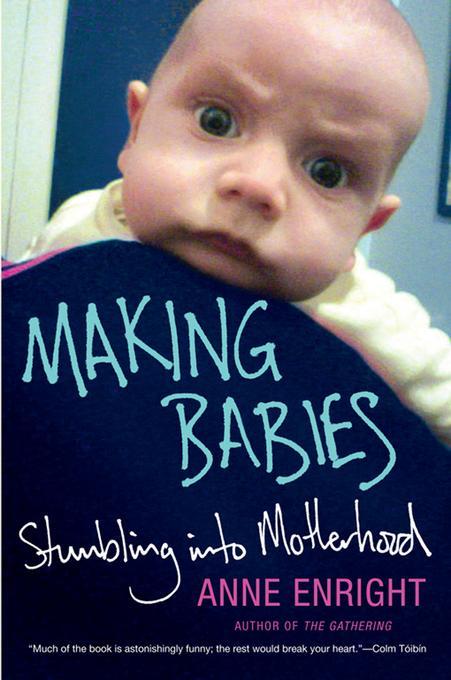 Making Babies: Stumbling into Motherhood EB9780393084078