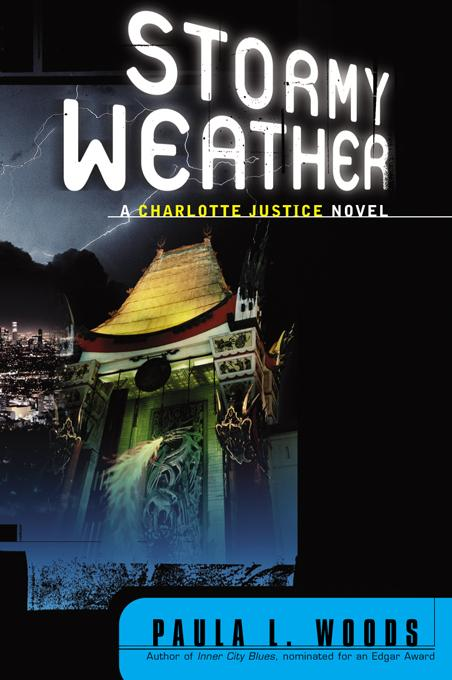 Stormy Weather: A Charlotte Justice Novel EB9780393346343