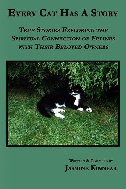 Every Cat Has A Story: True Stories Exploring the Spiritual Connection of Felines with Their Beloved Owners EB9780978389390