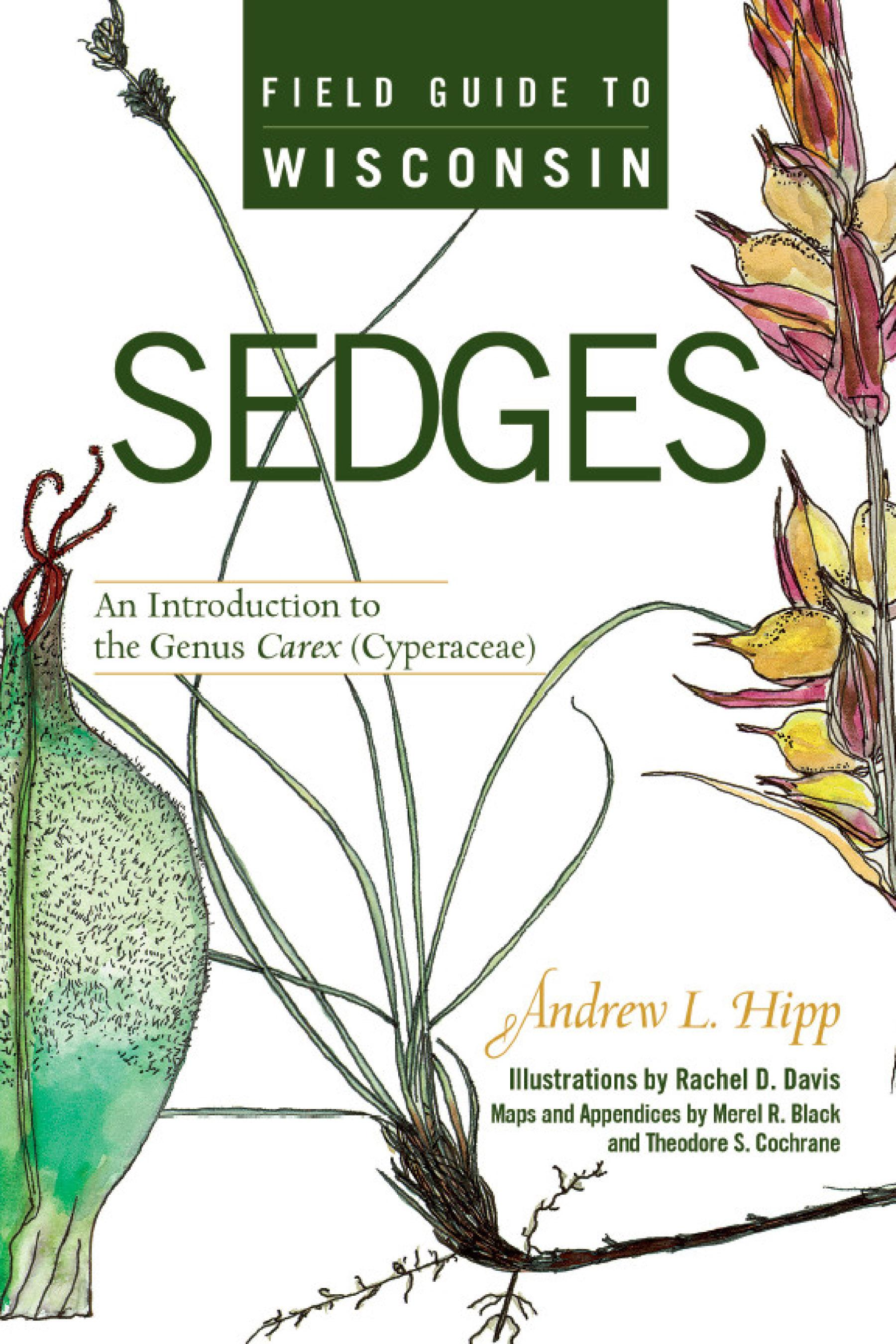 Field Guide to Wisconsin Sedges: An Introduction to the Genus Carex (Cyperaceae) EB9780299225933