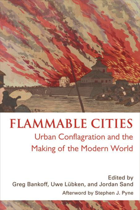Flammable Cities: Urban Conflagration and the Making of the Modern World EB9780299283834