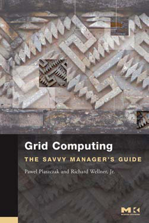 Grid Computing: The Savvy Manager's Guide EB9780080470764