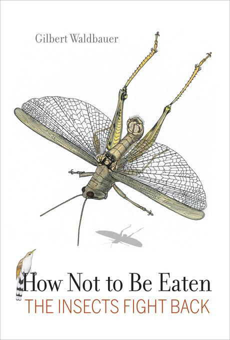 How Not to Be Eaten: The Insects Fight Back EB9780520952461