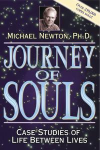 Journey of Souls EB9780738717500