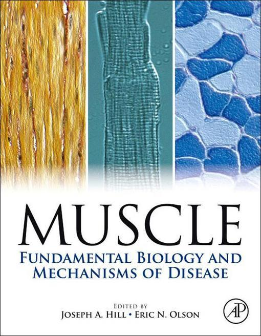 Muscle: Fundamental Biology and Mechanisms of Disease EB9780123815118