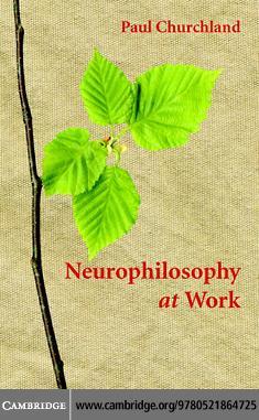 Neurophilosophy at Work EB9780511271632