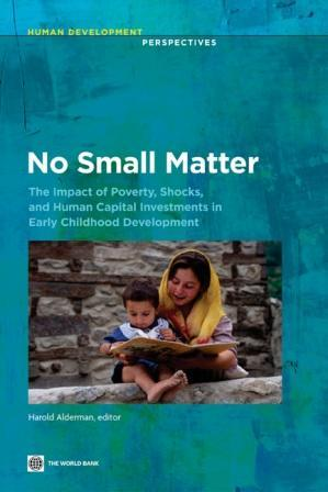 No Small Matter: The Impact of Poverty, Shocks, and Human Capital Investments in Early Childhood Development EB9780821386781