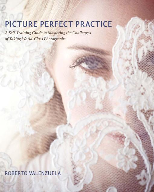 Picture Perfect Practice: A Self-Training Guide to Mastering the Challenges of Taking World-Class Photographs EB9780132852913