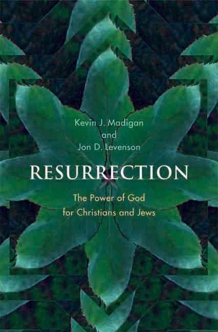 Resurrection: The Power of God for Christians and Jews EB9780300145205