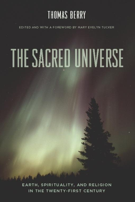 Sacred Universe: Earth, Spirituality, and Religion in the Twenty-first Century EB9780231520645