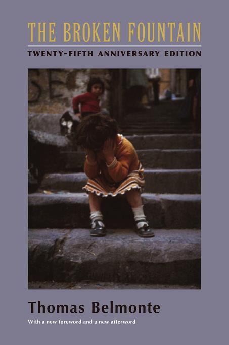 The Broken Fountain: Twenty-fifth Anniversary Edition EB9780231501088